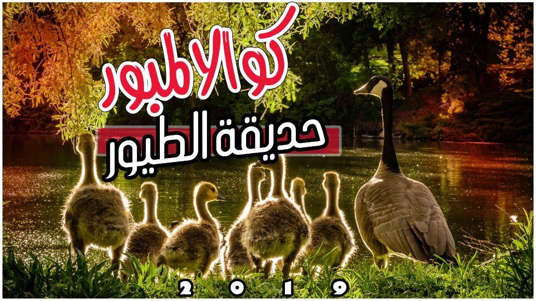 حديقة الطيور ماليزيا