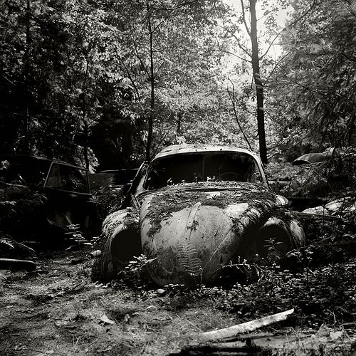 VW Beetle by TommyGT, via Flickr