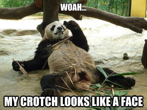 Funny Zoo Memes : Woah my crotch looks like a face woah my crotch looks like a