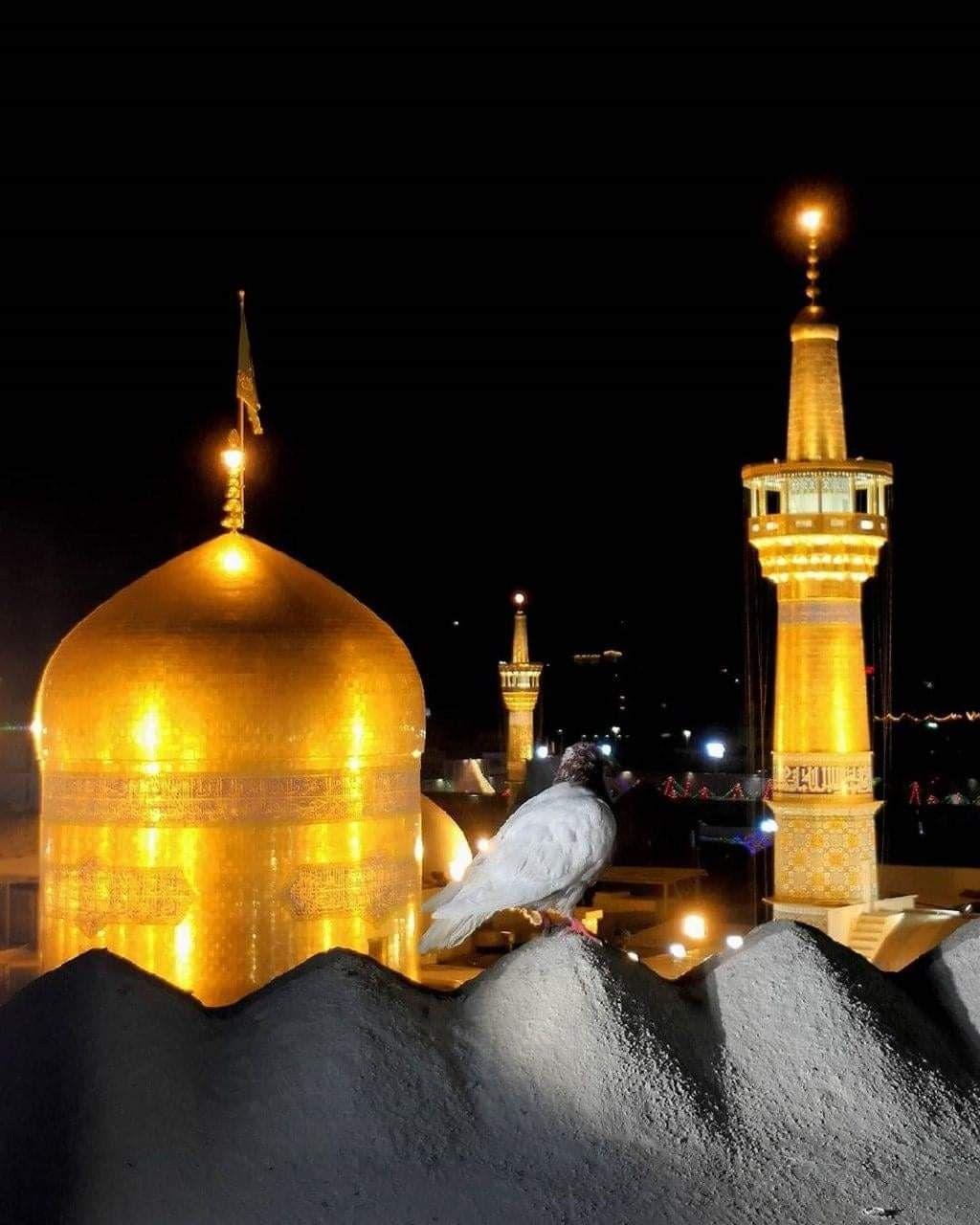 Holy Shrine Of Imam Ali Raza A S Shia Multimedia Team Smt Shrine Islamic Art Shia Islam