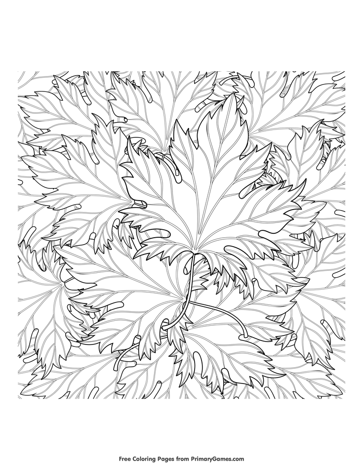 flower leaf coloring page - Google Search | Leaf coloring page ... | 951x735
