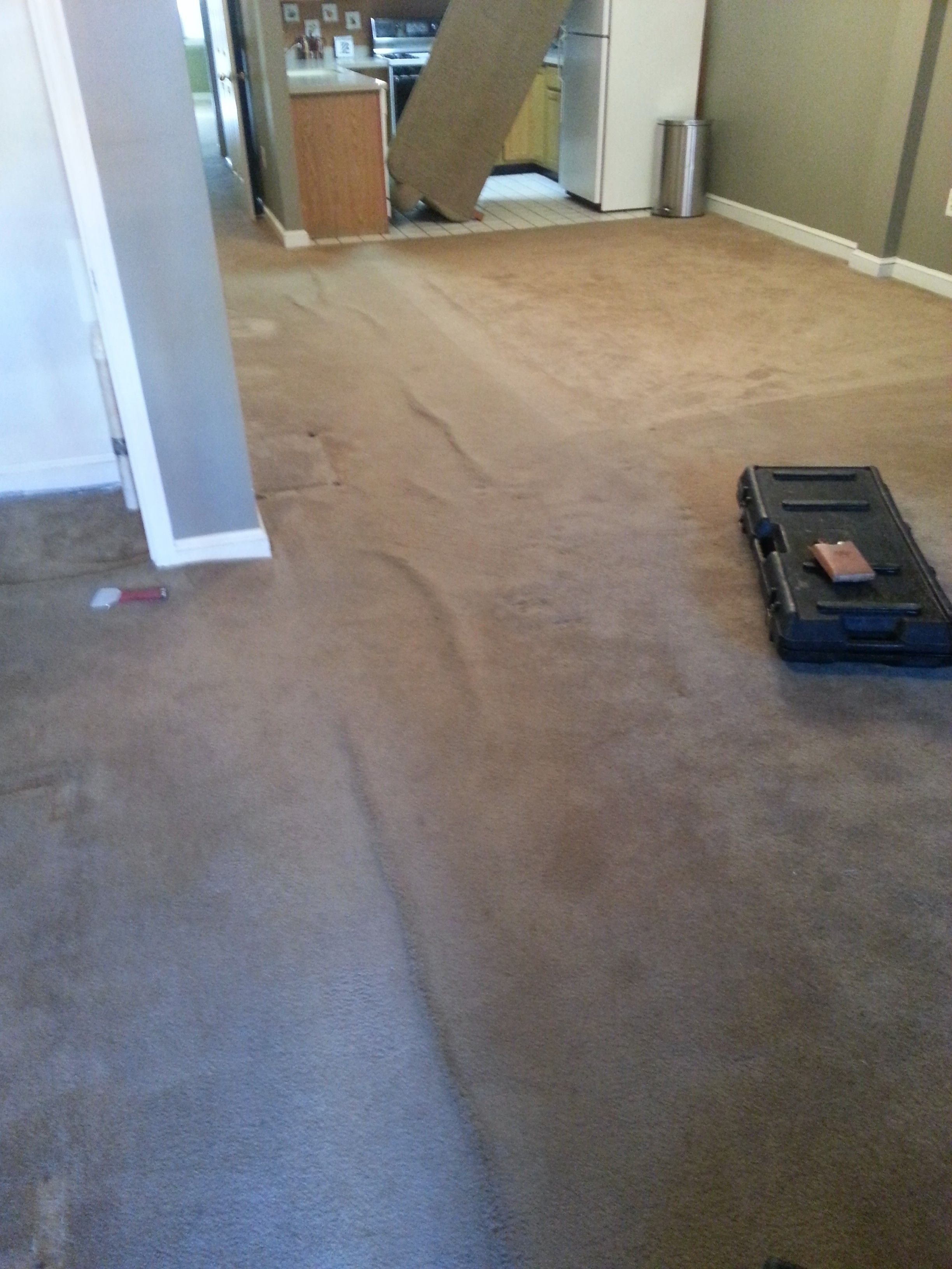 Perfect 20 Pics Carpet Cleaning Bethesda Md And View How To Clean Carpet Hardwood Floors Carpet