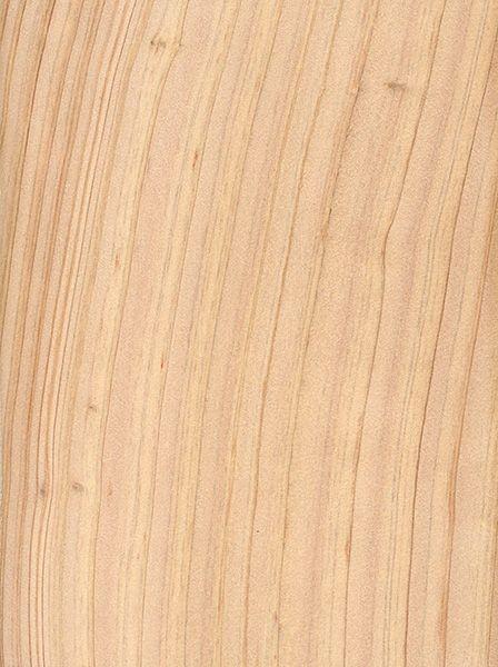 Best Atlantic White Cedar White Cedar Wood Texture Wood 400 x 300