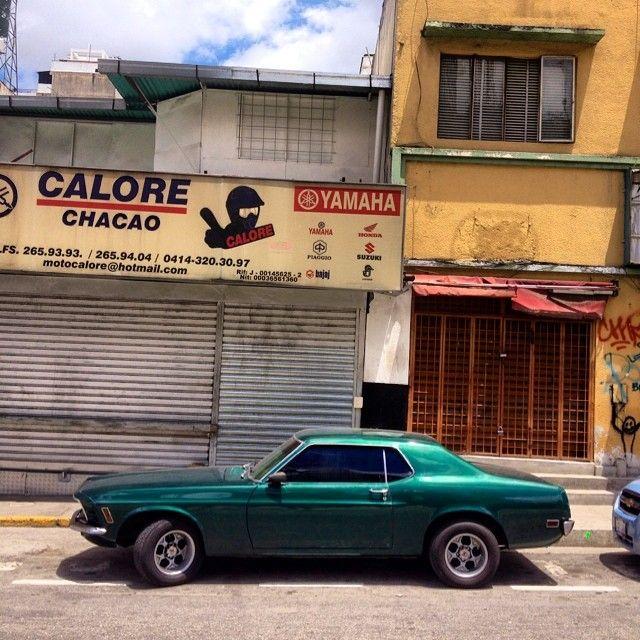 Mustang, en Chacao