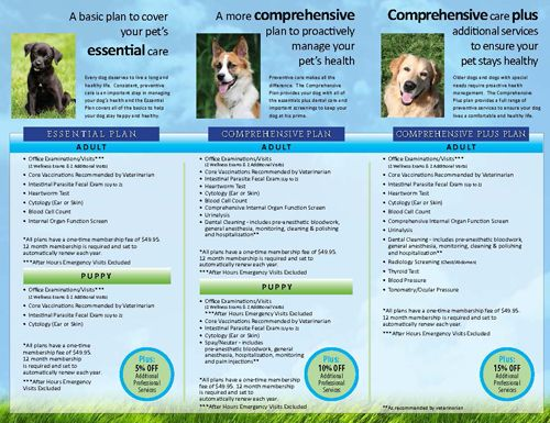 Paw Plans For Pet Insurance Through Holladay Veterinary Hospital Pet Wellness Pet Health Pet Health Care