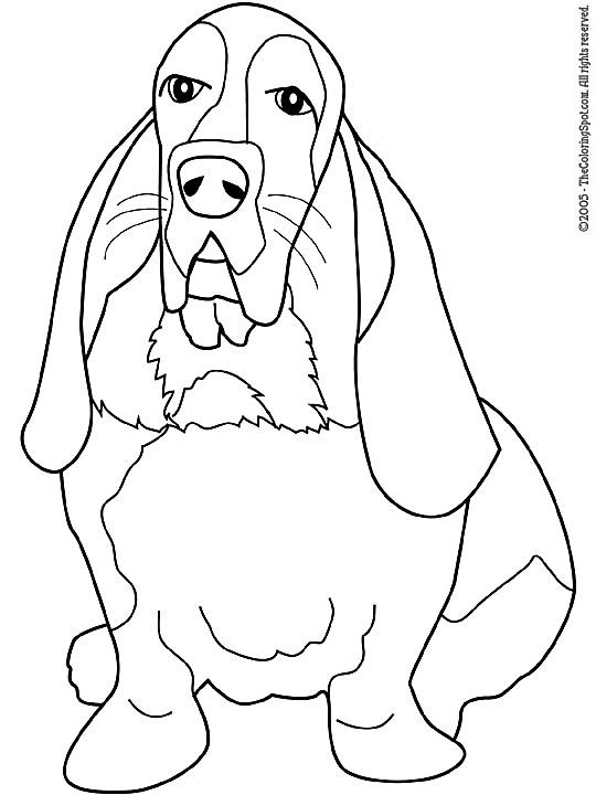 Kleurplaten Honden Katten.Kleurplaat Honden Kleurplaat Kleurplaten Honden En Katten