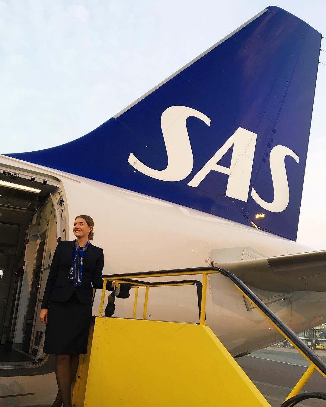 Sas Scandinavian Airlines Airbus A319 Scandinavian Airlines System Aviation History Sas