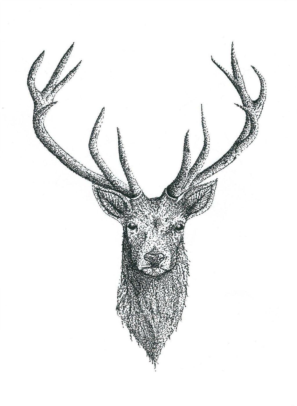 pin by ferdi tayda on d vme fikirleri pinterest tattoo mens rh pinterest nz deer head tattoo with cherry blossom horns deer head tattoo