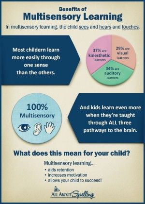 Benefits of Multisensory Learning | Big Head Classifieds