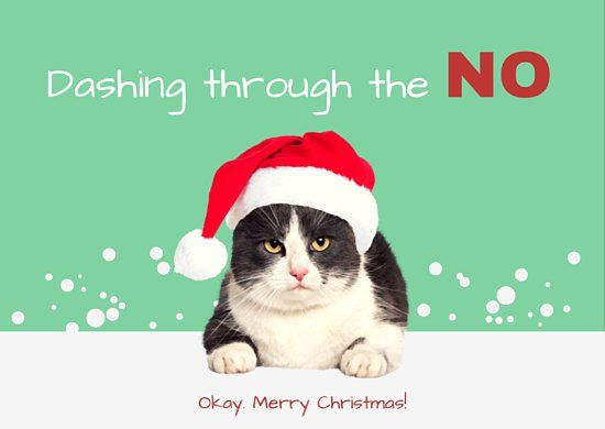 Found On Bing From Www Canva Com Grumpy Cat Christmas Christmas Movies Merry Christmas