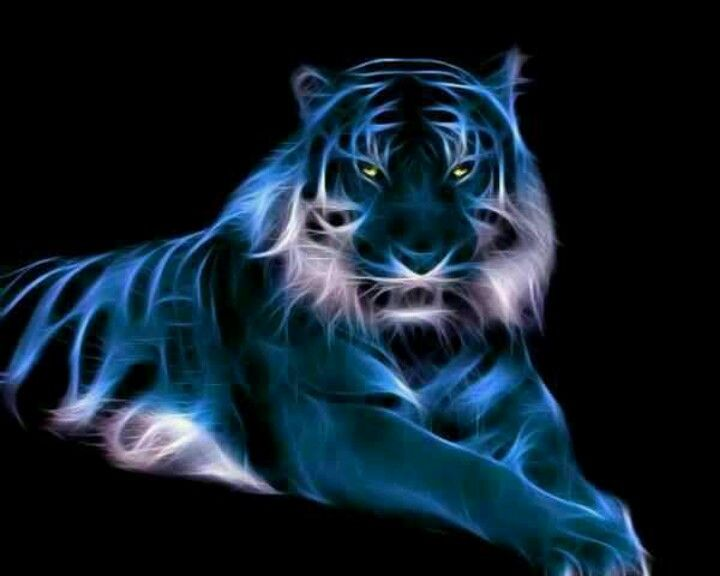 Cool Background Pics Of Tigers