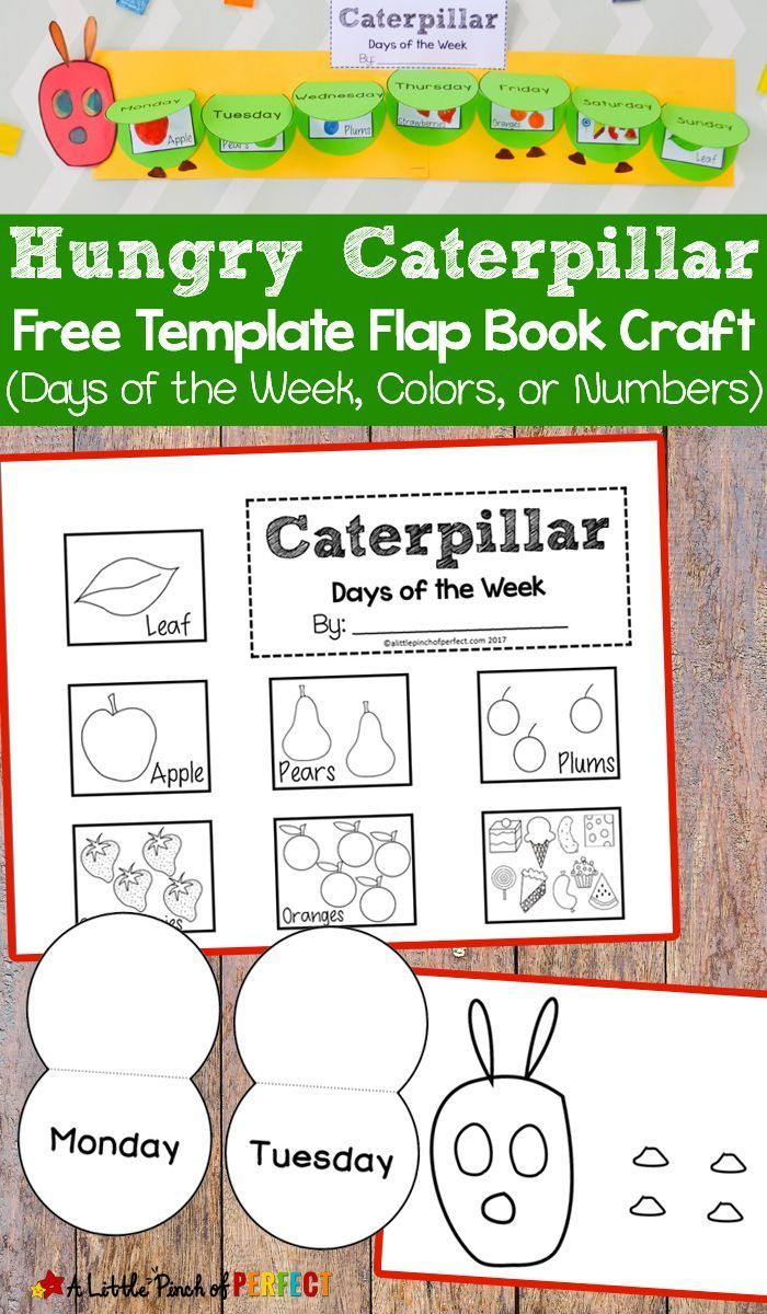 Hungry Caterpillar Flap Book Craft and Free Template - | Book crafts ...