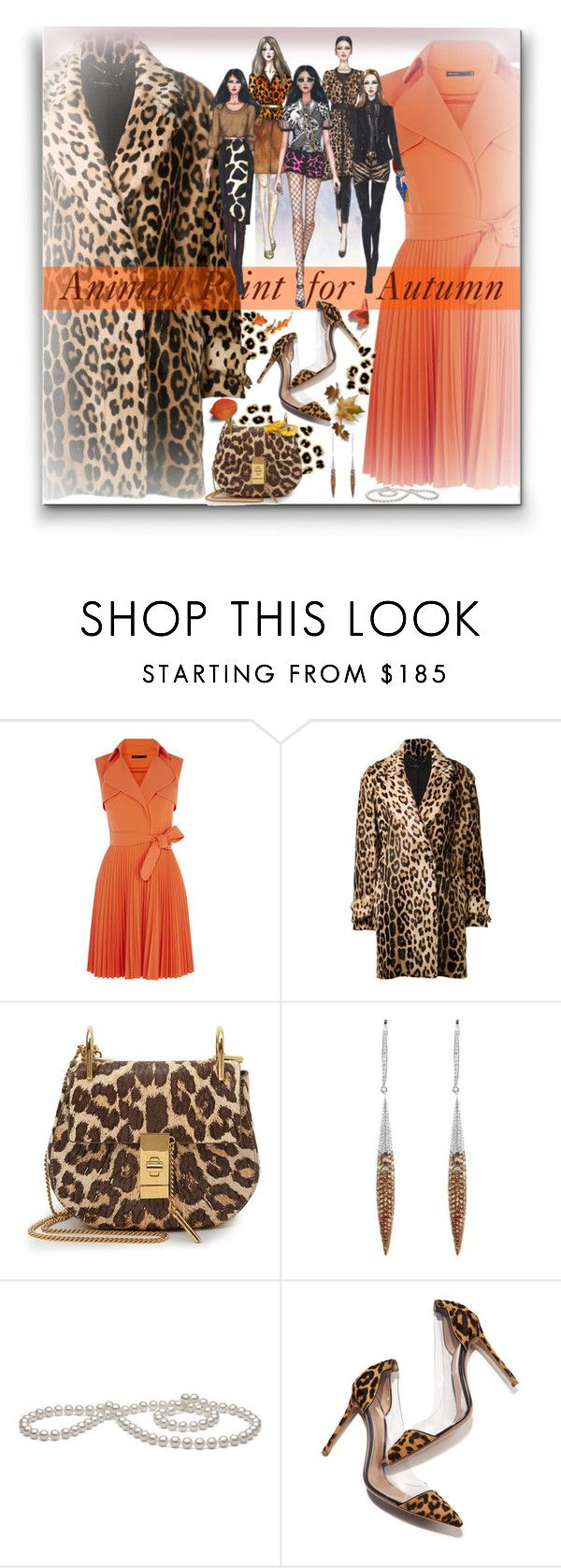 """Animal Print for Autumn"" by fassionista ❤ liked on Polyvore featuring Barbara Bui, Chloé, Salavetti and Gianvito Rossi"