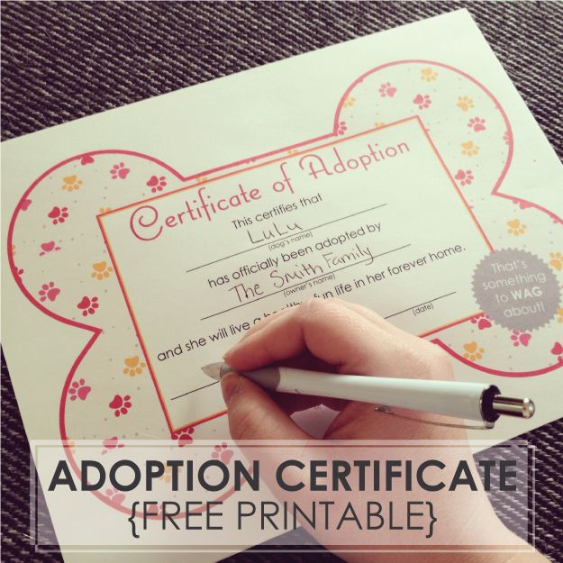 Free Printables Dog Adoption Certificates Whenpoochcomestoshove
