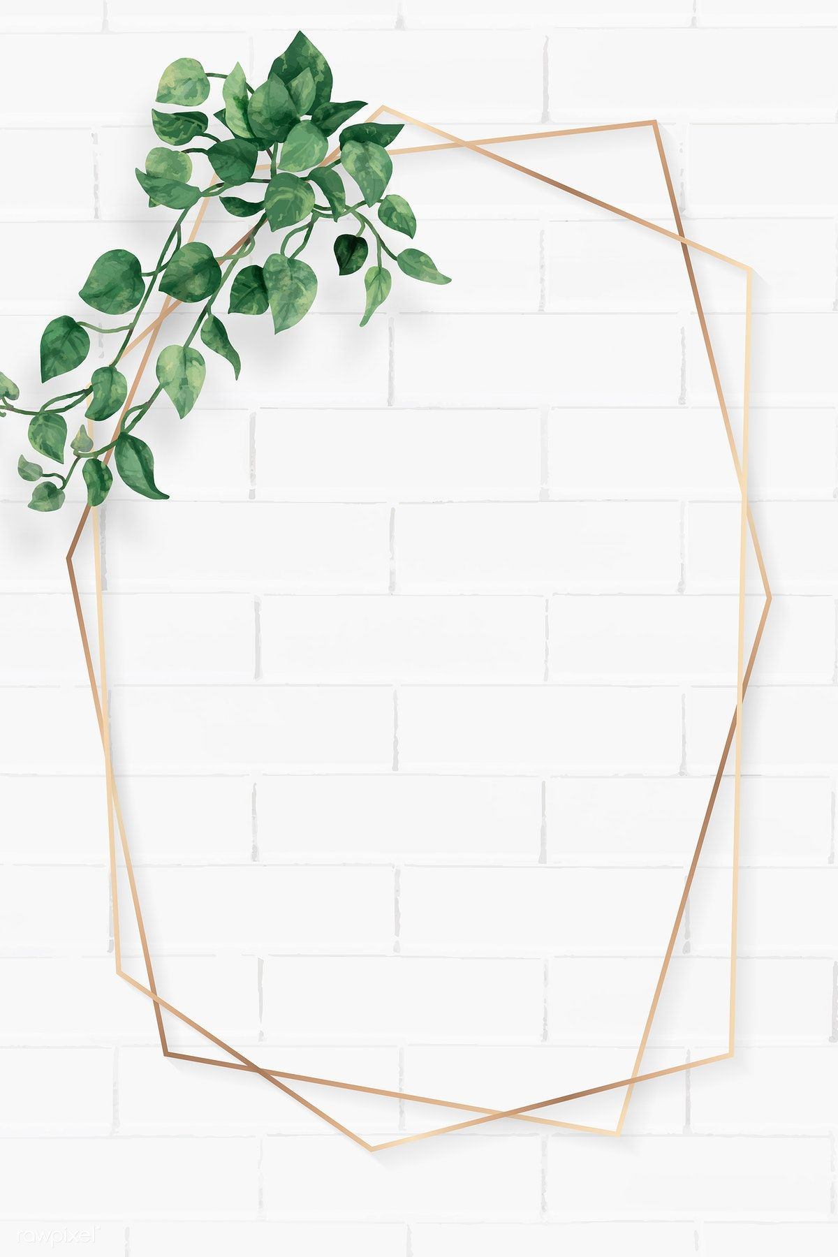 Download premium vector of Blank hexagon camellia leaves frame vector by Ning about leaves frame, white flora, hexagon, hexagon frame, and folhas 1208581