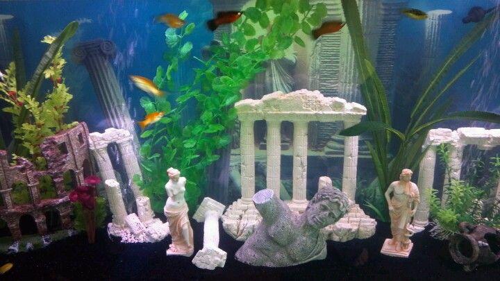 Our Roman Ruins Themed Aquarium Fish Keeping Hobby