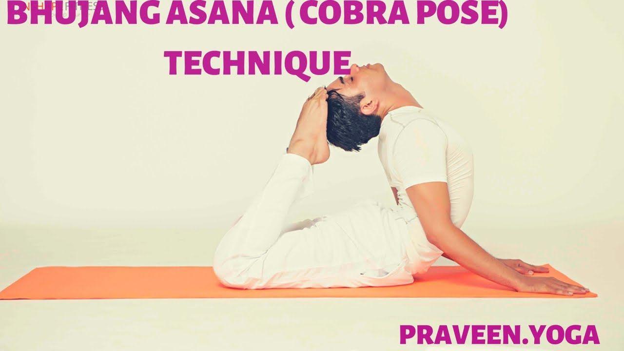 Bhujang AsanaCobra PoseYoga TechniqueBack Bend