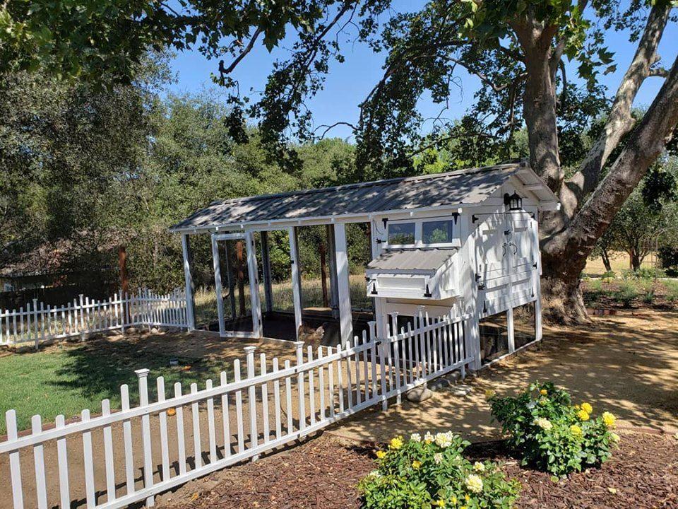 American Coop Walk in chicken coop, Chicken coop, Coop