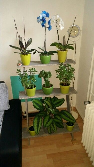 Blumentreppe DIY