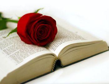 Resultat d'imatges de llibres i roses free imagenes