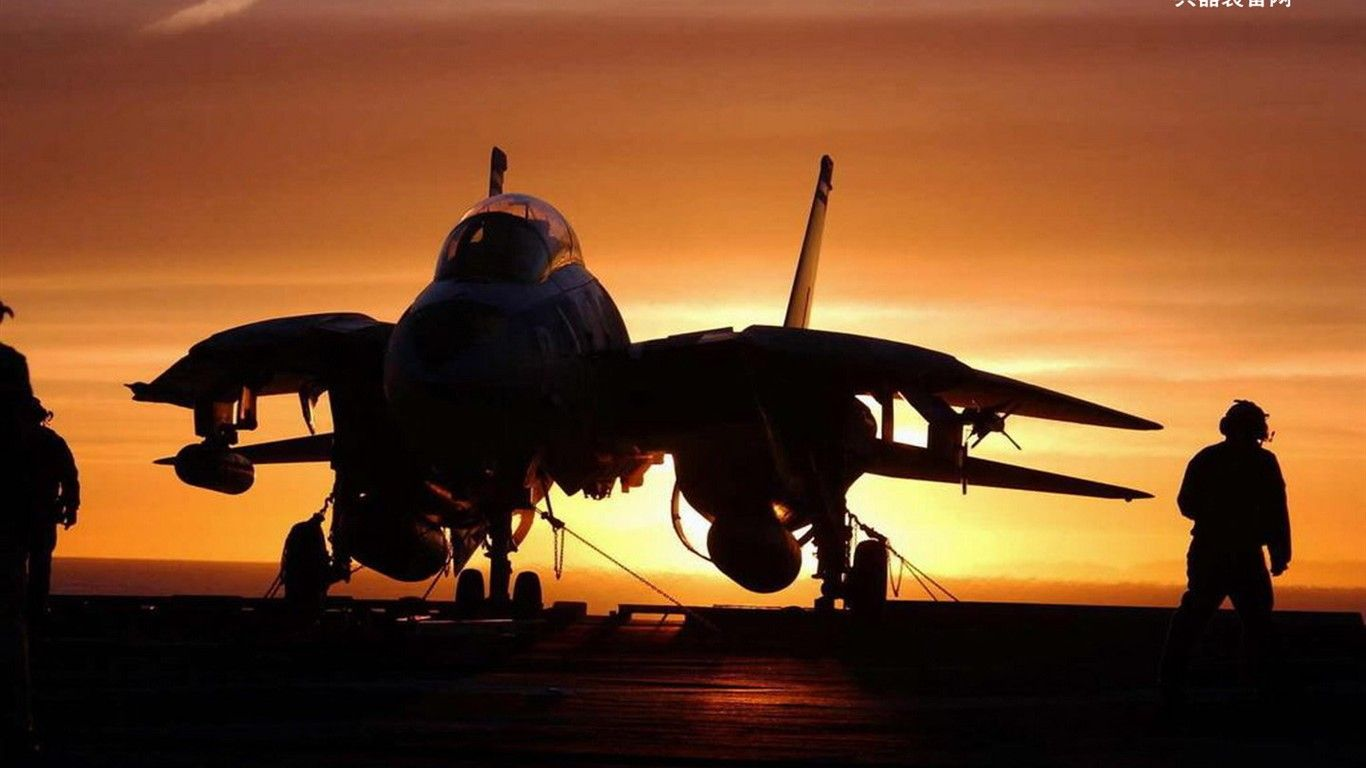 F 14 Tomcat I Would Kill To Go For A Ride In One Of These