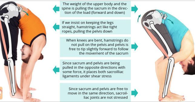 did you know?  Visit us  jointpainrepair.com  Via  google images  #jointpain #jointpains #jointpainrelief #kneepain #kneepains #kneepainnogain #arthritis #hipjoint  #jointpaingone
