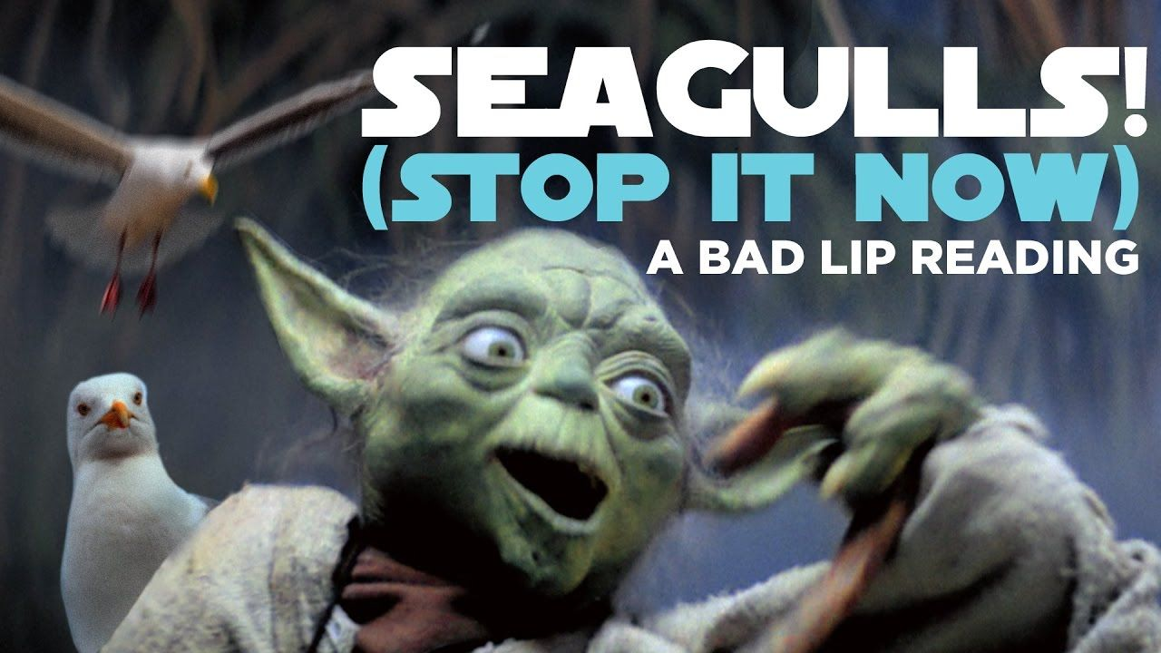 Seagulls! (Stop It Now), An Extended Lyric Video for Bad