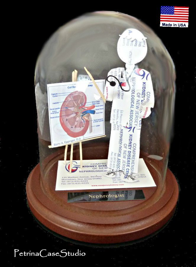 Kidney Doctor Nephrologist - Business Card Sculpture. Made fro 20 ...