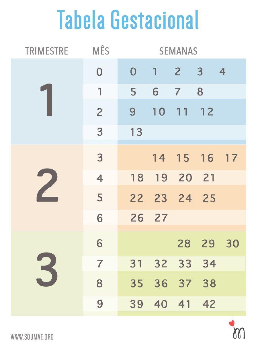 Aprenda A Contar A Gravidez Em Semanas Tem Tabela Gestacional