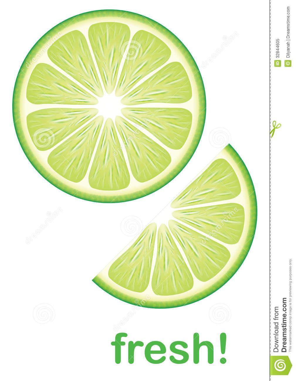 Fresh Lime Stock Vector Illustration Of Vegetarian Half Lime Vector Lime Fruit Illustration