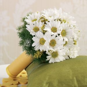 For My Bouquet I Would Love A Of Daisies They Are Daisy WeddingWild Flower
