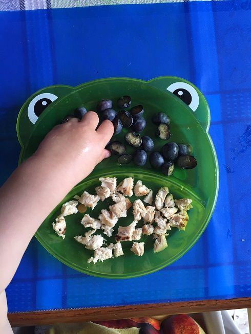 Baby toddle meals what we feed our 15 month old baby pinterest baby toddle meals what we feed our 15 month old forumfinder Choice Image
