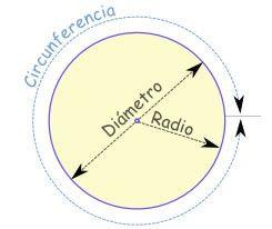 Partes De Un Círculo Circulo Y Circunferencia Diametro De Una Circunferencia Circunferencia