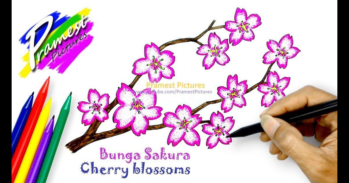 34 Sketsa Bunga Lamtoro How To Draw Cherry Blossoms Flower Coloring Pages For Kids Download Black P Sketsa Bunga Gambar Bunga Mudah Halaman Mewarnai Bunga