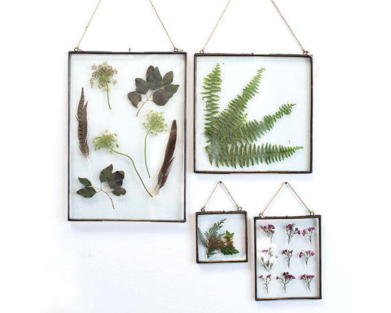 Clear Glass Frame Frame Rustic Frame Gift Picture Frame Pressed