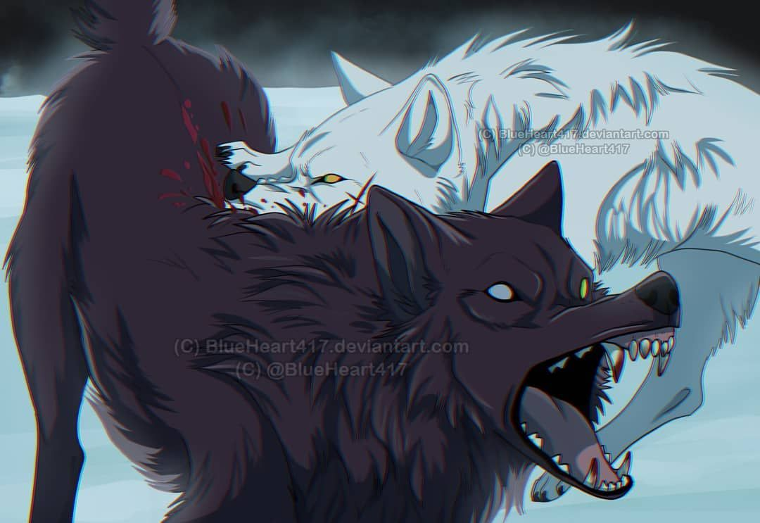 Blue On Instagram Fight Scenes Are Best Scenes Wolfsrain Wolfsrainanime Wolfsraindarcia Blackwolf Wolf Gr Wolf S Rain Anime Wolf Canine Art