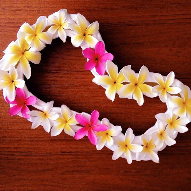 One Of My Favorite Island Things To Do Is Pick Plumeria And Place Them In A Lei Vase The Plumeria Scent Is So Tropical Flowers Plumeria Colorful Flowers