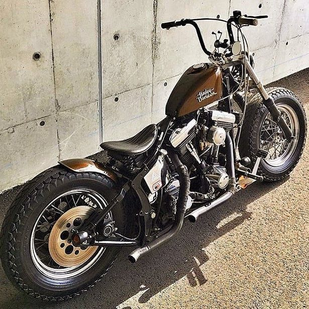 293 Curtidas 0 Coment 225 Rios Harley In Roll Harley In
