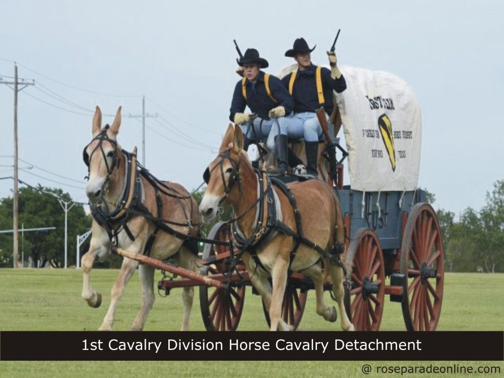 1st cavalry division horse cavalry detachment fort hood texas