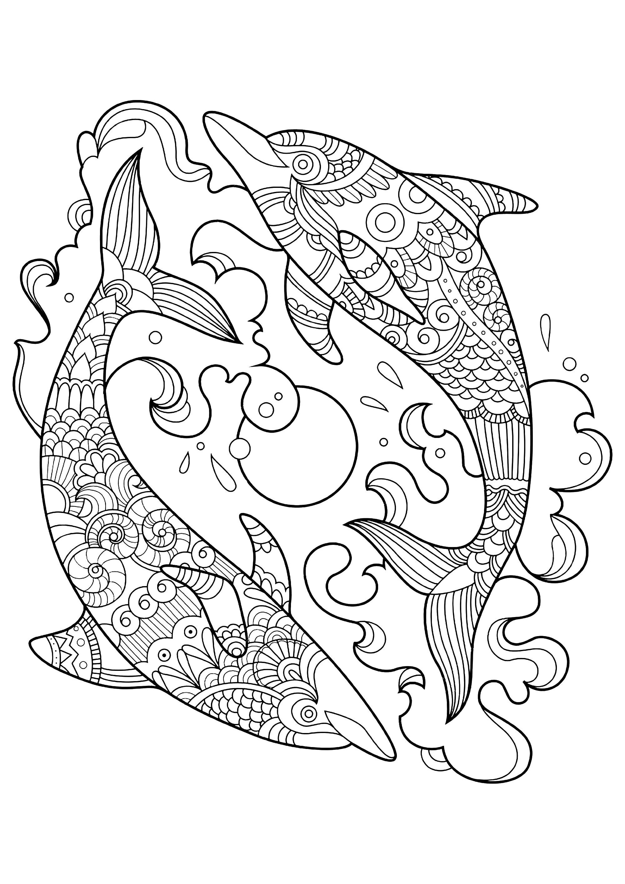 Dolphins to color for children Funny Dolphins coloring