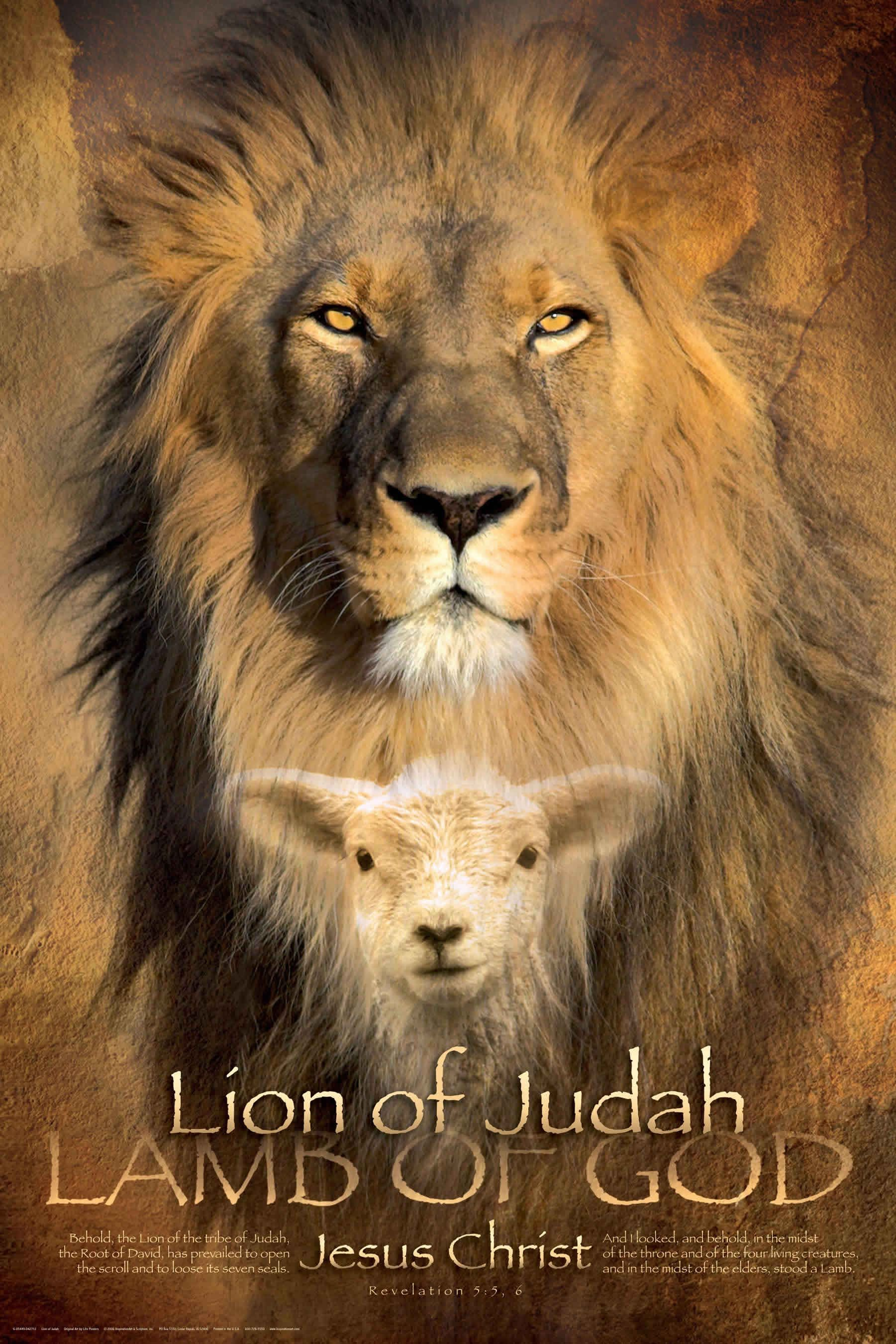 The Lion of Judah IS the Lamb of God..Yeshua, Messiah, Jesus ... for Lion And Lamb Painting  111ane
