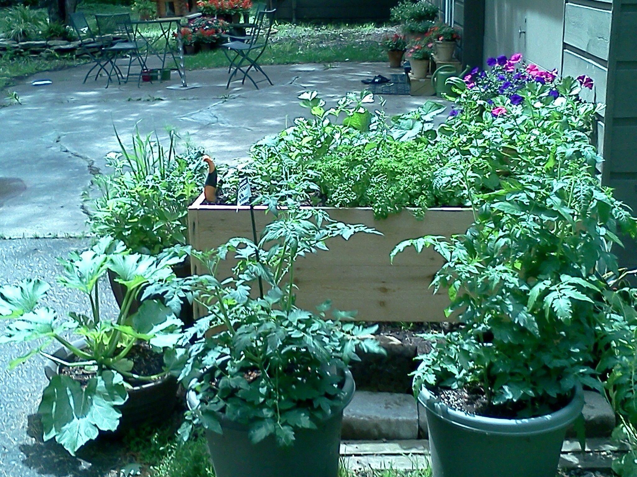 I built my garden box out of left over cedar siding and