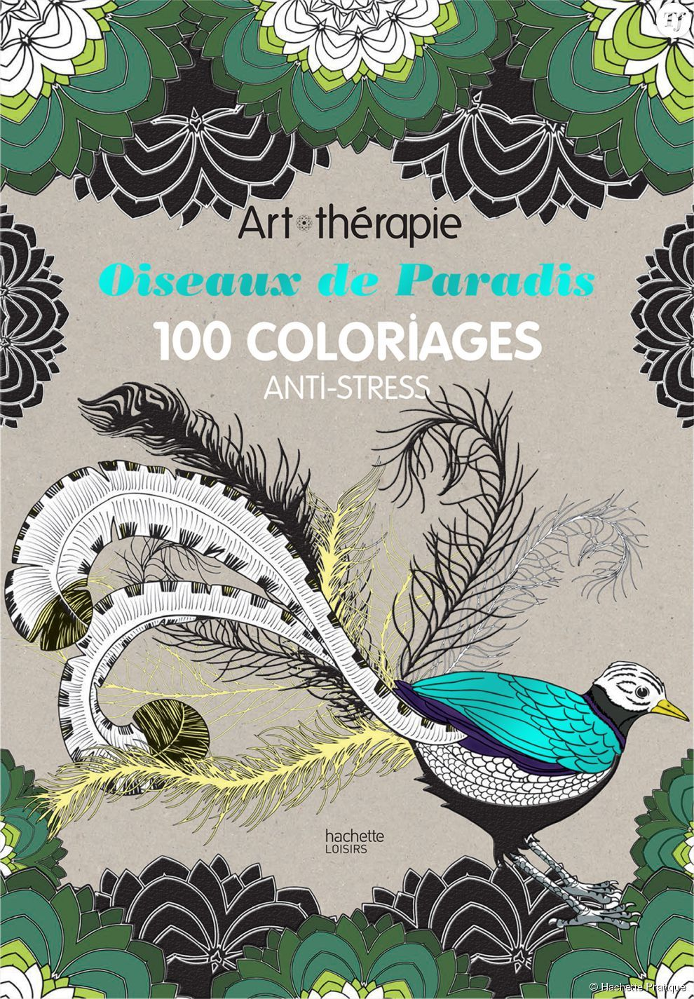 oiseaux de paradis 100 coloriages anti stress art thrapie hachette - Livre De Coloriage Anti Stress
