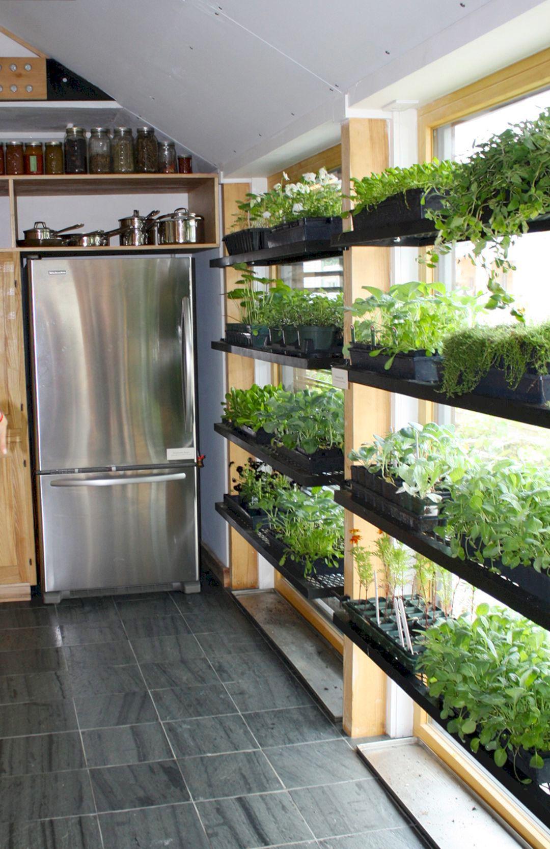 Twin Platform Bed Ikea, 175 Indoor Garden Apartment By Rexgarden In 2020 Herb Garden In Kitchen Indoor Vegetable Gardening Growing Plants Indoors