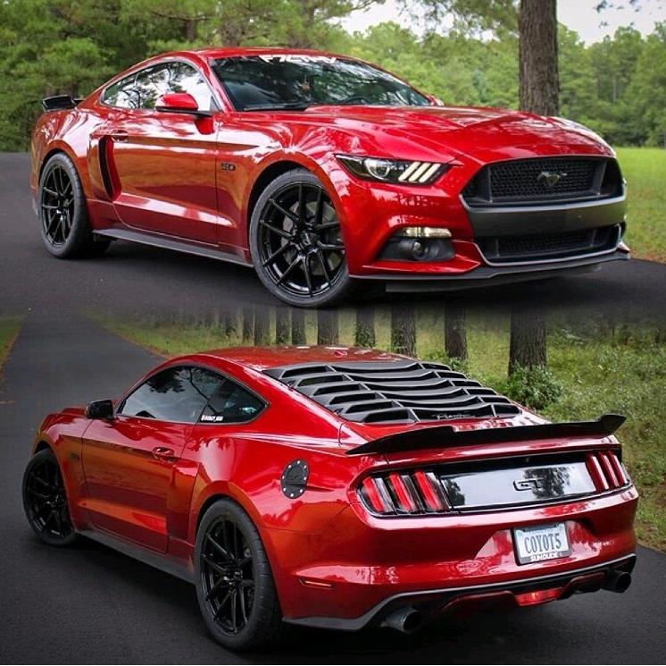 Rate This Mustang GT 1 to 100 Rate This Mustang GT 1 to 100