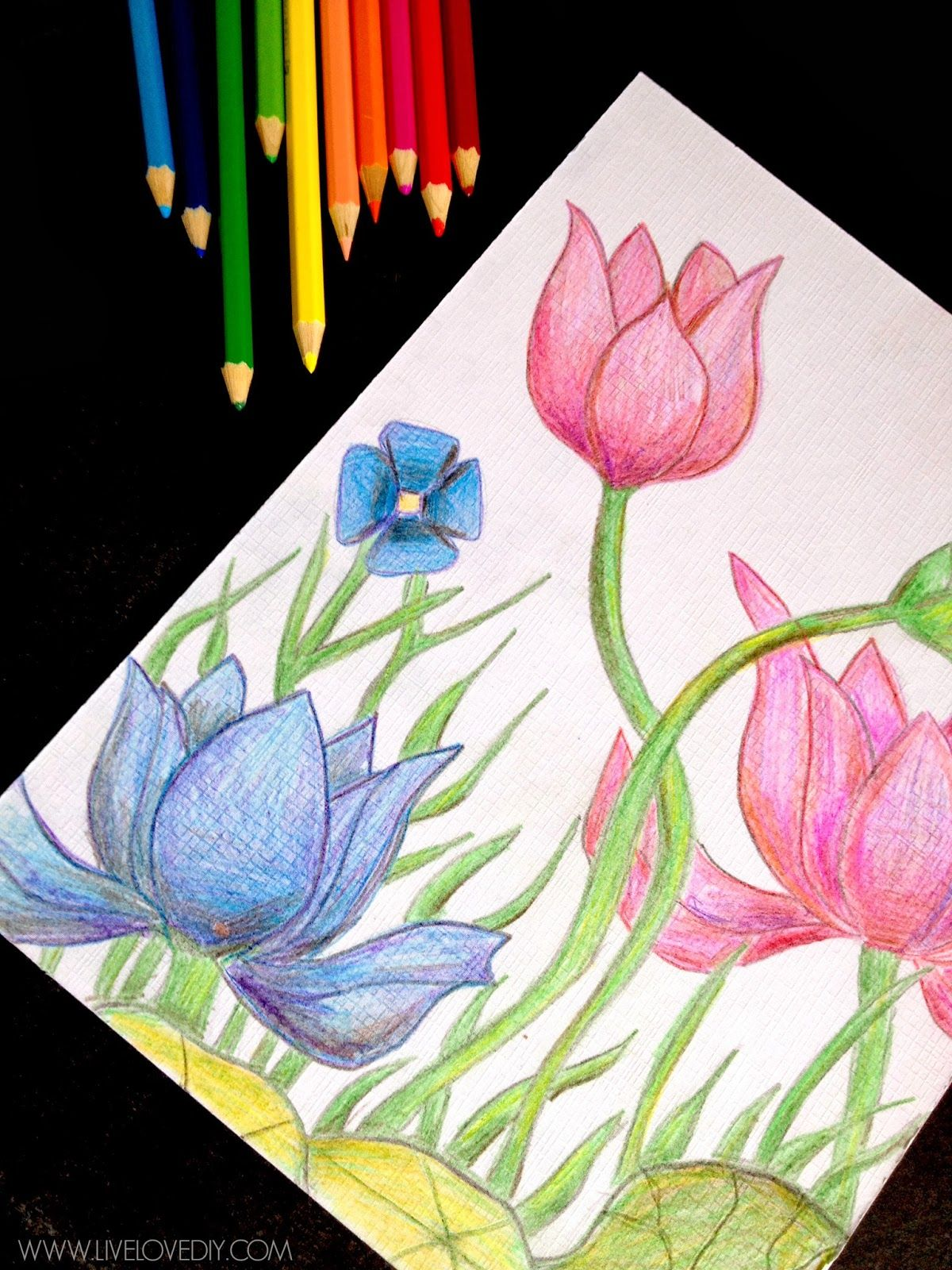 How to use watercolor pencils: an easy and fun way to make ...
