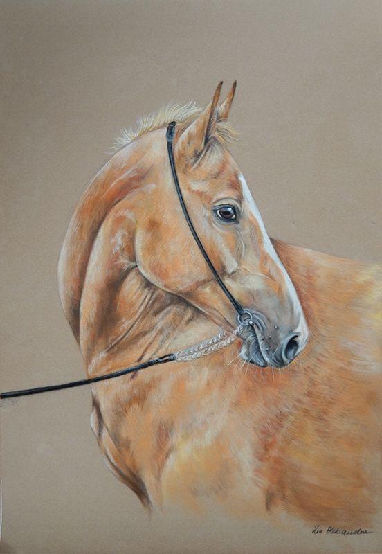 akhal-teke pastel horse
