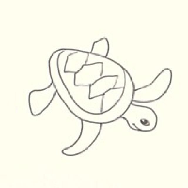 Draw a Sea Turtle in 3 Easy Steps Sea turtles Turtle and Rock