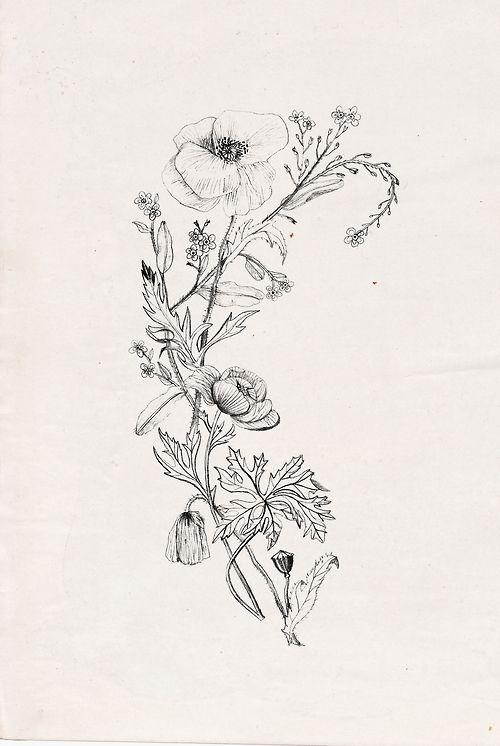 Poppy flower tattoo design inspiration tattoos pinterest poppy flower tattoo design inspiration mightylinksfo