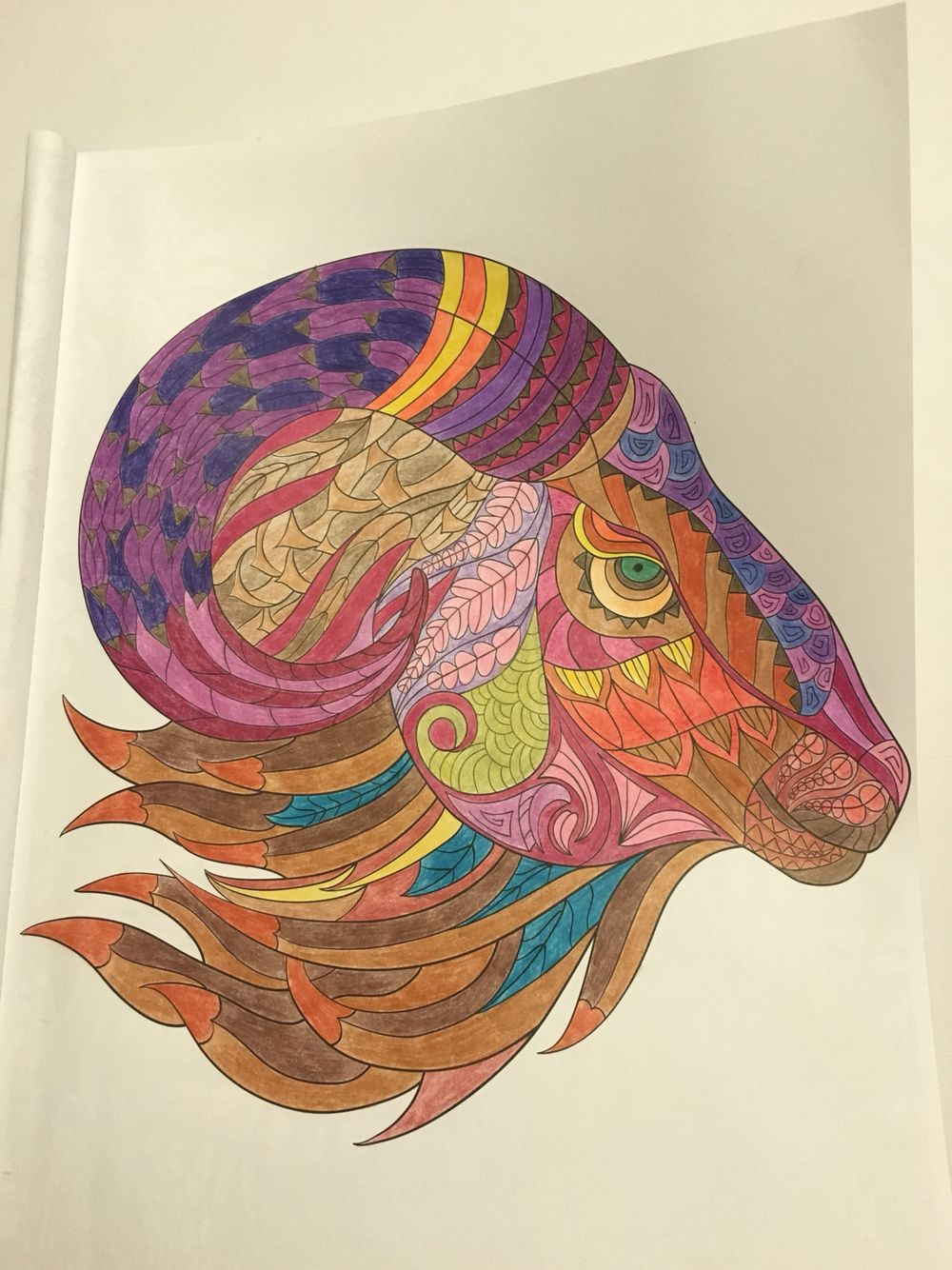Ram Coloured With WH Smith Pencils And Polychromos